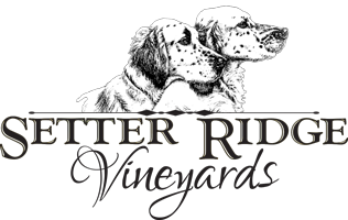 Setter Ridge Vineyards